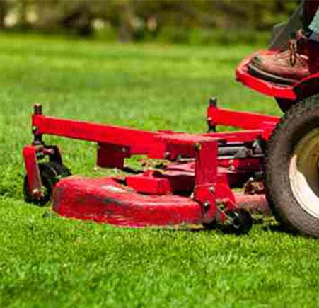 Minneapolis Lawn Mowing Service